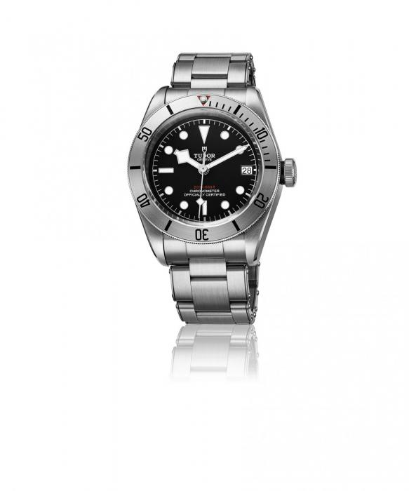 Tudor black bay steel 79730